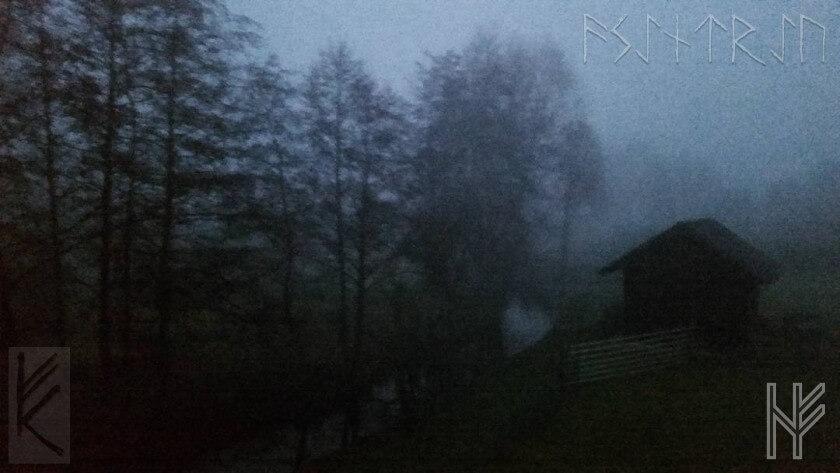 Bäume mit Hütte im Nebel