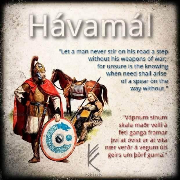 Havamal Spruch mit Krieger
