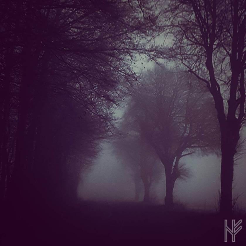 Ein mystischer Morgen