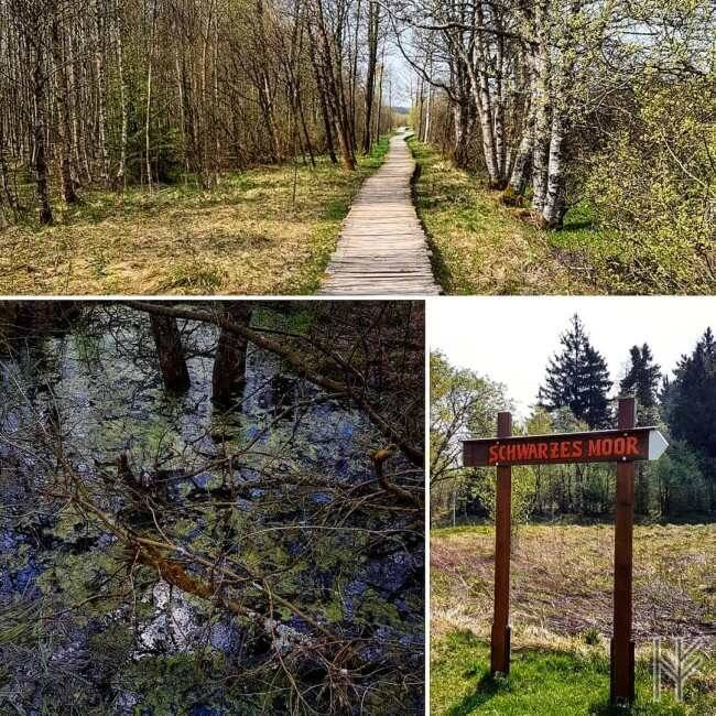 """Das """"Schwarze Moor"""" in der Rhön"""