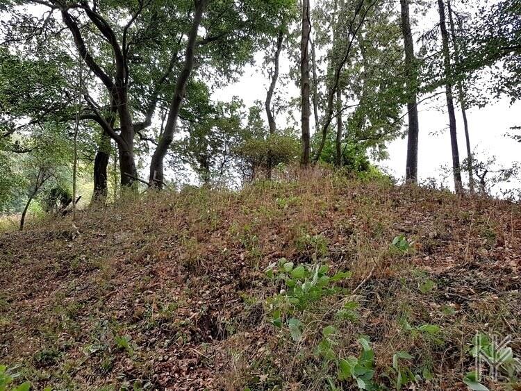 Das Hügelgrab
